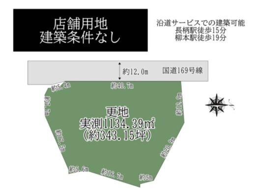 天理市 成願寺町:土地 間取り図